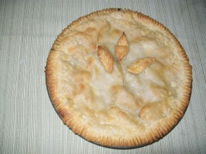 Yes, I baked a pie with the apples we picked! Solid proof my oven was used in the past year!